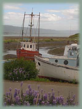 Les BOULINGUEURS..de la PLANETE.... Alaska_homer_007