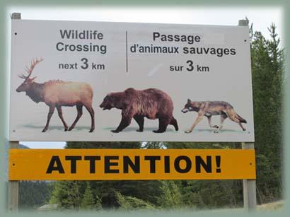 Les BOULINGUEURS..de la PLANETE.... Canada_20