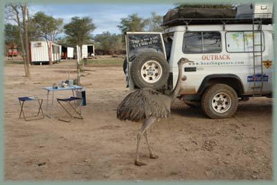 de julio del 2009 comienza nuestra exploracion de bolivia lo mismo
