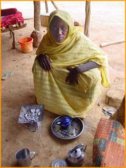 mauritanie desert sahara voyage 4x4 hzj78 photos. Black Bedroom Furniture Sets. Home Design Ideas