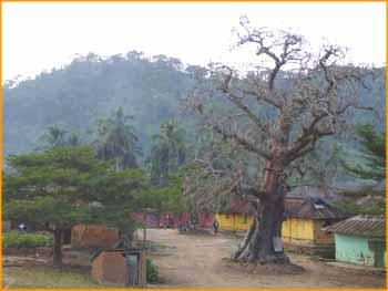 صور من Togo ع.ت.م افريقيا واستراليا Togo_029